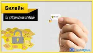 Как узнать пин код сим карты Билайн, пук код Билайн через интернет