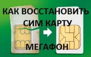 Как заблокировать сим карту Мегафон временно или навсегда